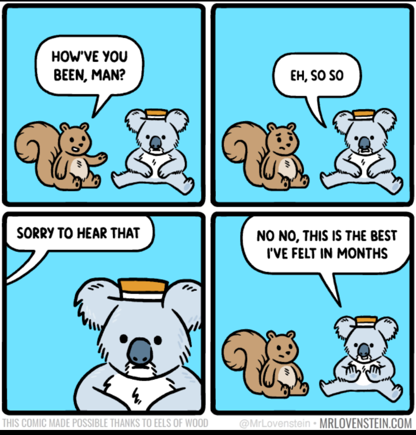 Comic squirrel sitting next to koala bear with porkpie hat on.  1 Squirrel How've you been man 2 Koala Eh, So so 3 Koala with squirrel bubble saying sorry to hear that 4 final panel koala says No No, this is the best i've felt in months